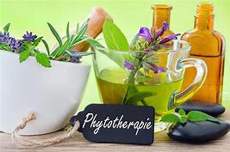 Phytothérapie et aromathérapie : un nouveau regard sur les compléments alimentaires
