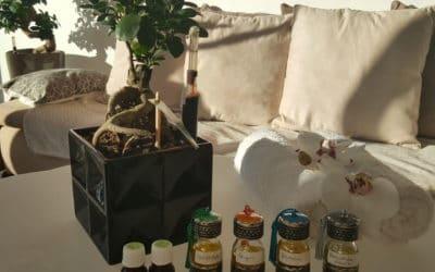 Décupler les bienfaits du massage grâce aux huiles essentielles